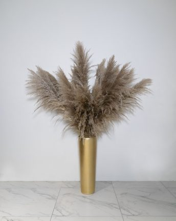 20 STEMS OF ON TREND DRIED PAMPUS GRASS